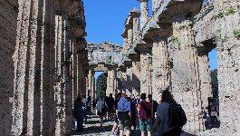 GUIDA Templi di Paestum